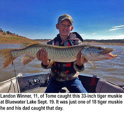 Nm game and fish fishing report sept 22 2015 krtn for Conchas lake fishing report