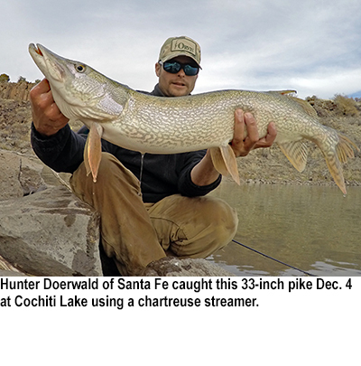 New mexico fishing and stocking reports for dec 8 for Conchas lake fishing report