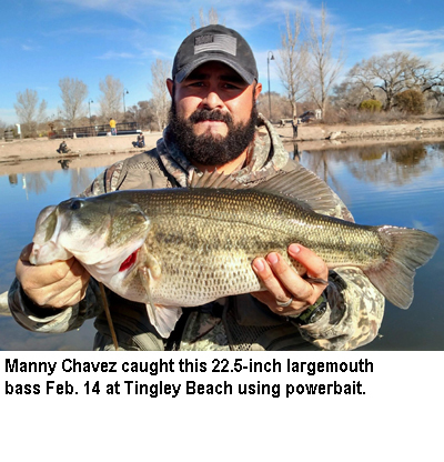 New mexico fishing and stocking reports for feb 23 for Ute lake fishing report