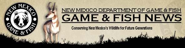 Public reminded to leave young wildlife alone for Nm department of game and fish
