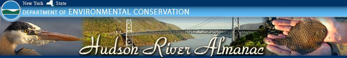 Hudson River Almanac