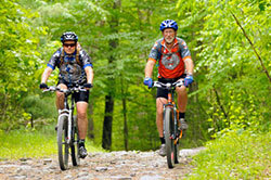 Two men biking on a trail