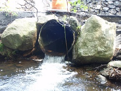 Perched culvert creates stream barrier