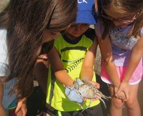 children holding blue crab moult