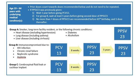 Adult Pneumococcal Vaccine Timing chart for ages 19-64 with underlying medical condition(s)