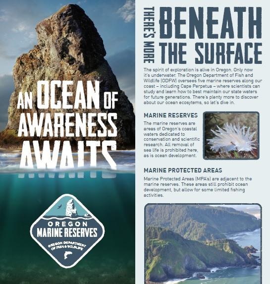 marine reserves brochure