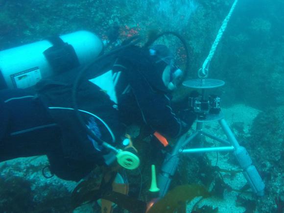 SCUBA diver and video lander
