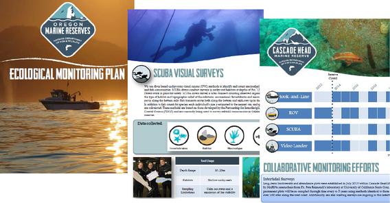 Ecological Monitoring Plan
