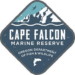 Cape Falcon logo