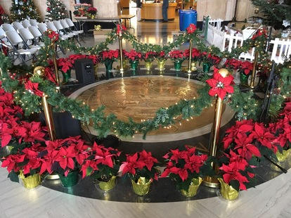 OR Seal Poinsetta