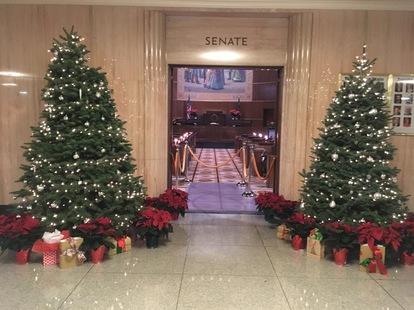 Senate Doors