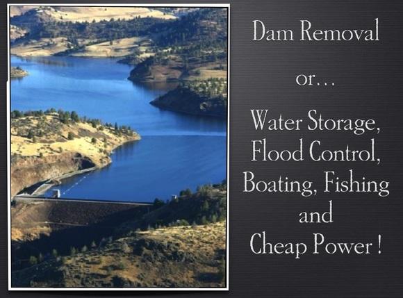 Dam Removal Insert