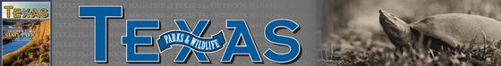 Header image magazine logo