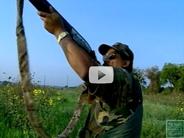 Public Hunting Video