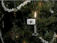 LBJ State Park holiday video