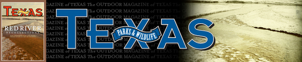 January February Mag header