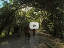 Brazos Bend bike trail
