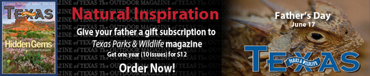 Give TPW Magazine for Father's Day ad