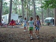 children in piney woods with trailer