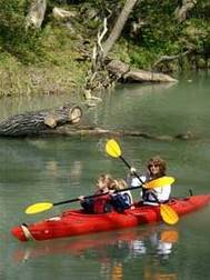paddler, two kids, canoe on wooded creek