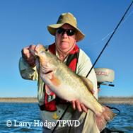 Man onboard with big fish. Lake horizon behind