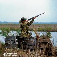 hunter profile aiming rifle up