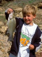 young boy holding up fish