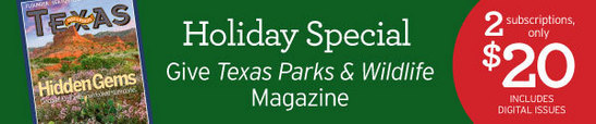 ad give TPW magazine for holiday gifts