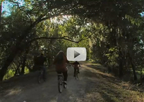 two bikers, riding away, shady, flat trail