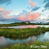 marsh, pink and blue sky at sunset