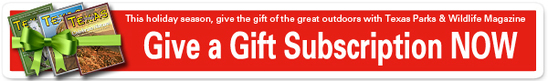 TPW Magazine gift offer