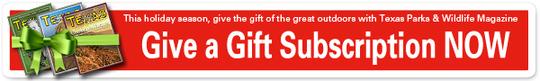 TPW Magazine gift offer
