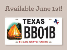 license plate with camp scene