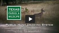 Drawn Hunt Video Still