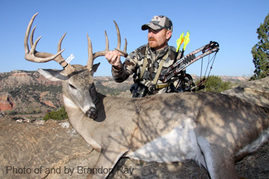Archery only season opens october 3 for deer and turkey for Lost texas fishing license