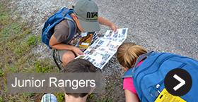 Junior Rangers