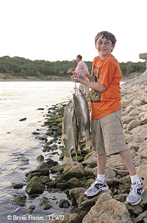 Boy with stringer of fish