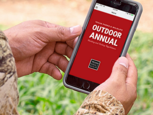 phone displaying Outdoor Annual