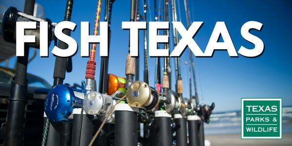 Fish Texas