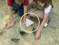 hands in dinosaur track video