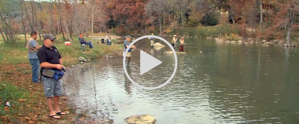 folks fishing for trout - video link