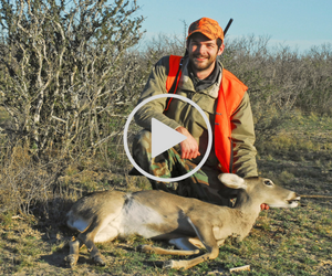hunter with doe, video link