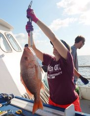 red snapper being weighed