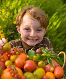 TomatoKiddo