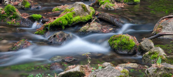 Honey Creek-TPWD