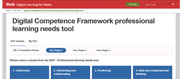 DCF Prof Learning needs tool