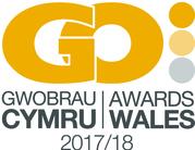 Bilingual Go Awards 2017
