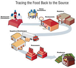 Diagram illustrating the tracing of food back to its source