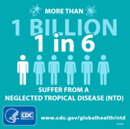 NTD Infographic