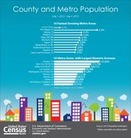 County/Metro Area